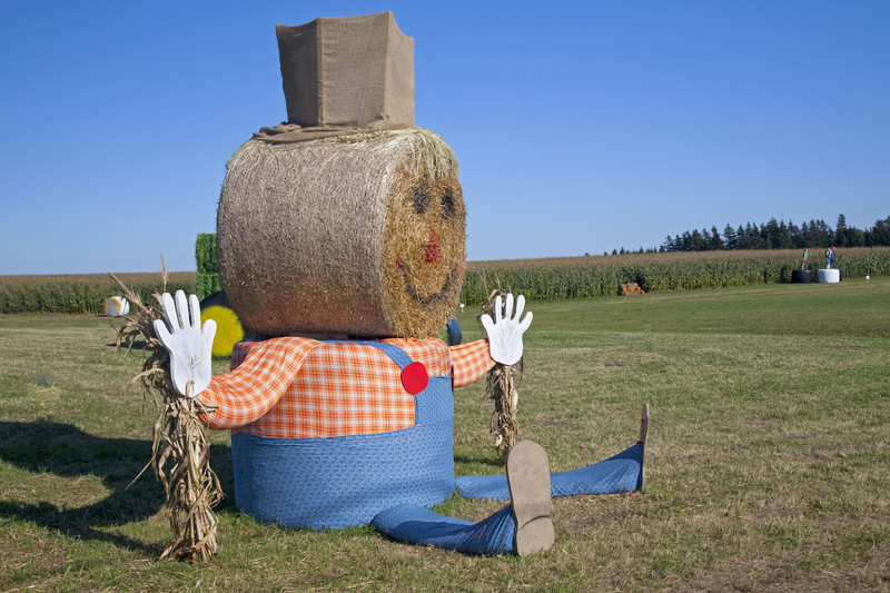 Pumpkin Farm Insurance - Wisconsin
