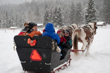 Sleigh Ride Insurance - IL-IN-IA-KS-KY-MI-MN-MO-OH-WI